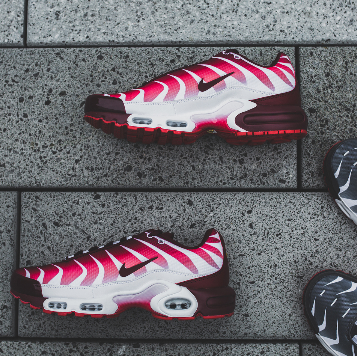Nike Air Max Plus Before and After the Bite Sneakers