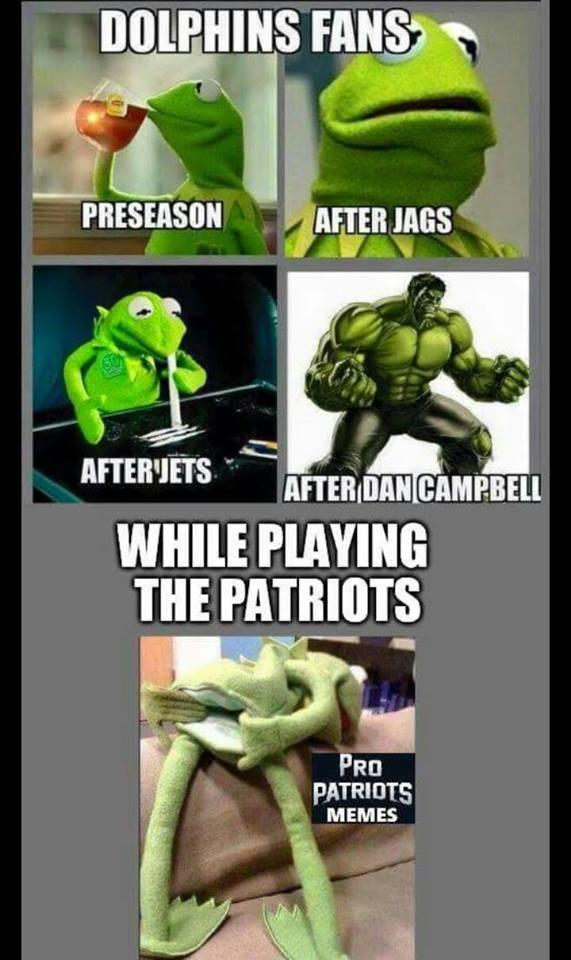 Patriots Dolphins Meme : patriots, dolphins, Memes, Brady, England, Patriots, Squashing, Tannehill, Miami, Dolphins