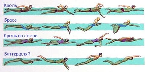 Польза плавания в бассейне-какие делать упражнения