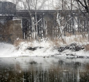41113 - geese railroad bridge