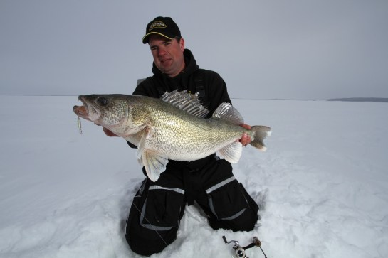 Jason Mitchell with a tank walleye.  Fort Peck is remote and rugged but the big fish potential is off the charts.