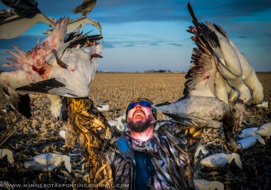 31614 - snow goose hunt sd-10