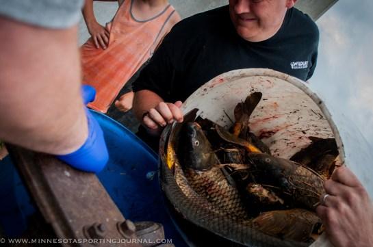 61114 - turtle bowfishing curt wells-27