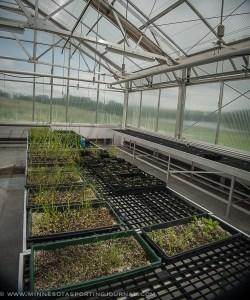 62914 - prairie wetlands learning center-4