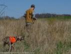 Whistling Ridge Hunt-196