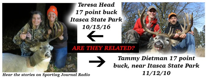 tammy-vs-teresa-bucks