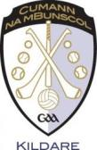 Image result for cumann na mbunscol kildare