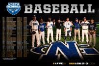 UNG Baseball