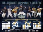 TCC Baseball