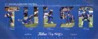 Tulsa Football Spring Poster