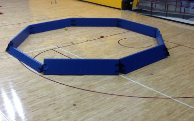 """25′ x 25′ Major 22″ high Portable Foam Gaga Pit w/ one 12″ high """"stepover"""" panel for entry/exit"""