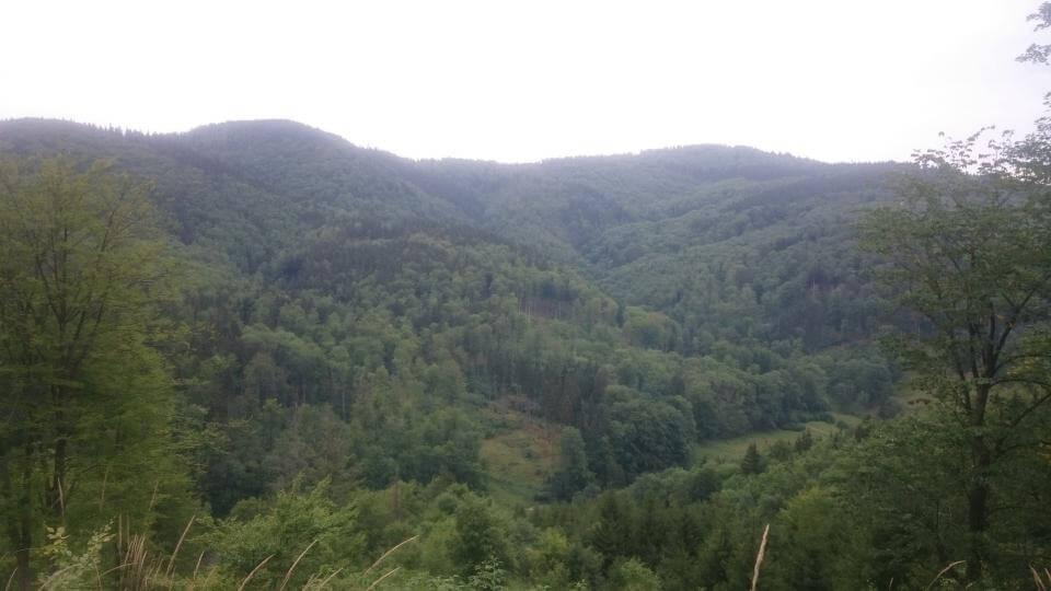 Krajobraz górski wokół Gluszycy MTB