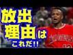 【MLB】大谷翔平のエンゼルスがゴールドグラブ賞正捕手のマルドナードを放出した理由【大谷・MLB・エンゼルス】