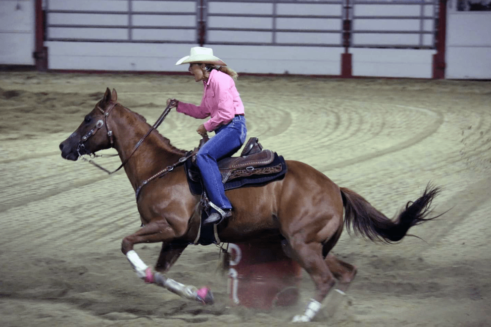 Wendy Chesnut treeless horse saddle rider endurance