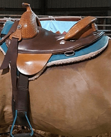 custom Equestrian Horse Saddle barrel