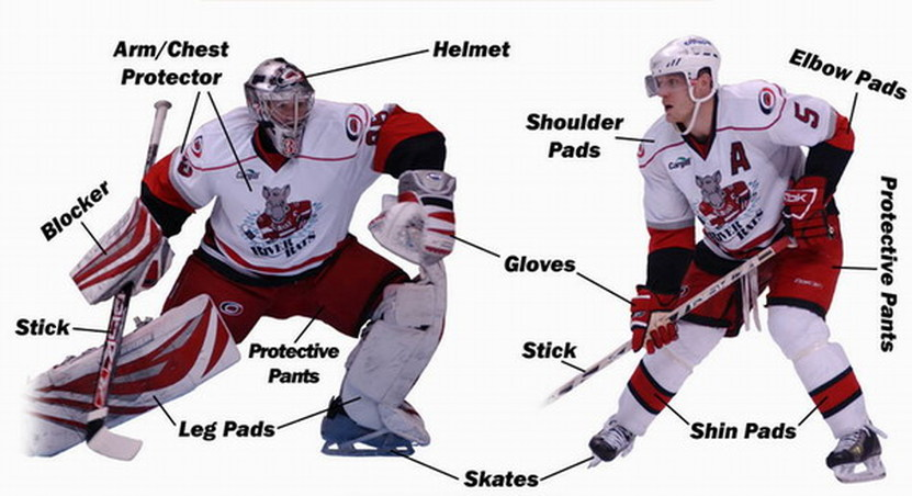 hockey player diagram how to draw wiring diagrams equipement ideas sports is played on ice therefore all players need skates have a lot of equipment they the following that you see in
