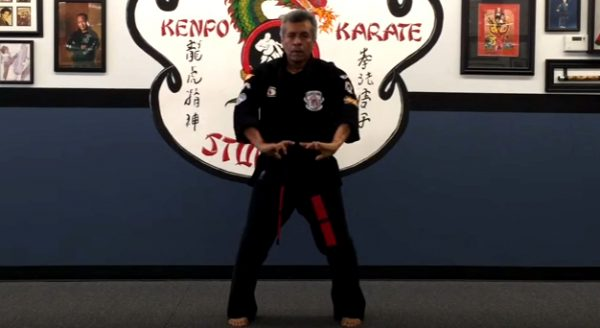 How to do Kenpo Karate Blocking Set 2
