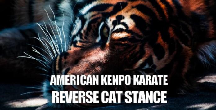 Reverse Cat Stance