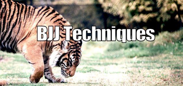Brazilian Jiu Jitsu Techniques