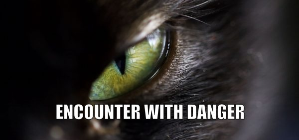 How to do Encounter with Danger Self Defense Technique