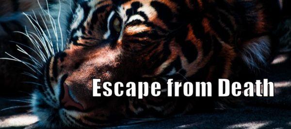 How to do Escape from Death Self Defense Technique