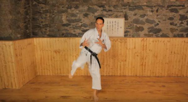 Master the Karate Roundhouse Kick