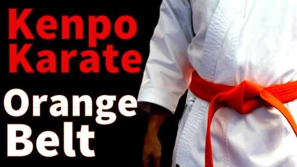 Kenpo Karate Orange Belt