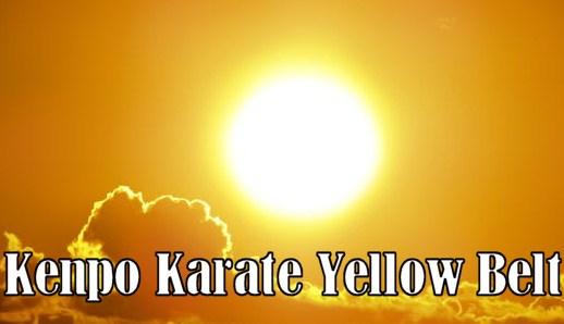 Yellow Belt Requirements in Kenpo Karate