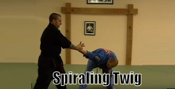 How to do Spiraling Twig Self Defense Technique