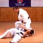 The Sparring Kata - Kumite No Kata Ni