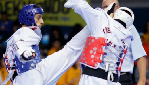 Ultimate Taekwondo Knockouts
