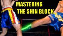 The Shin Block