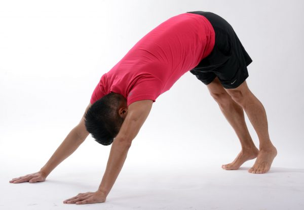 The Dog Pose in Yoga