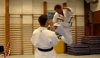 This is Mae Tobi Geri or Front Jumping Kick