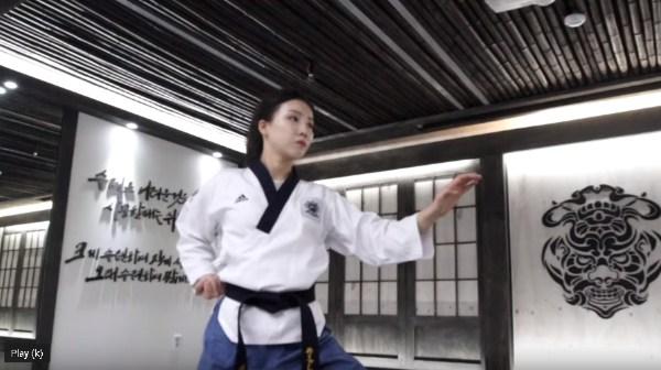 Taegeuk 3 Jang