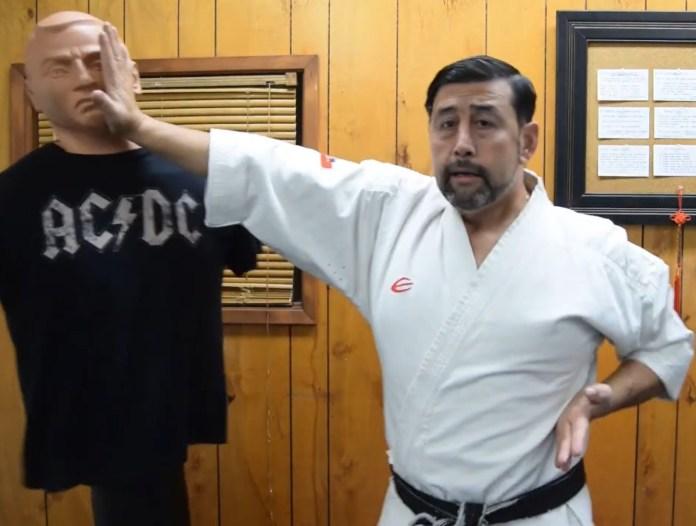 Shotei Uchi in Karate Step by Step