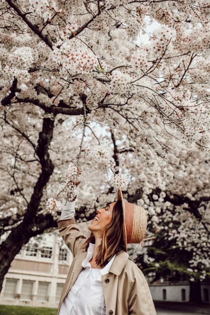 Seattle Fashion Blogger Sportsanista at the University of Washington Cherry Blossums