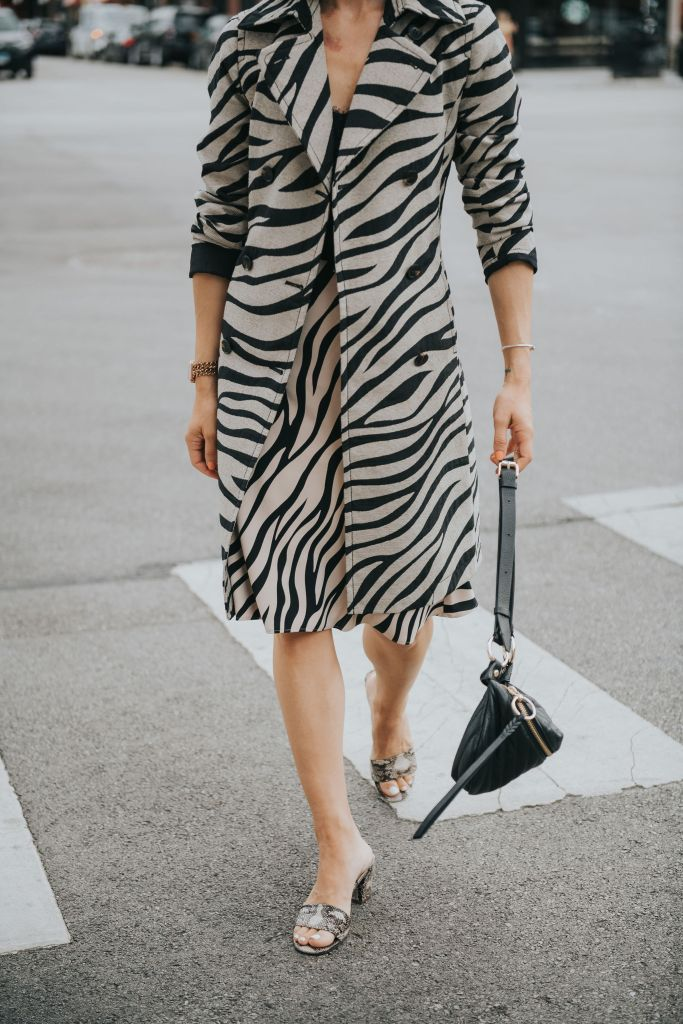 Fashion Blogger Sportsanista wearing Ann Taylor Zebra Print Trench Coat and Zebra Print Skirt