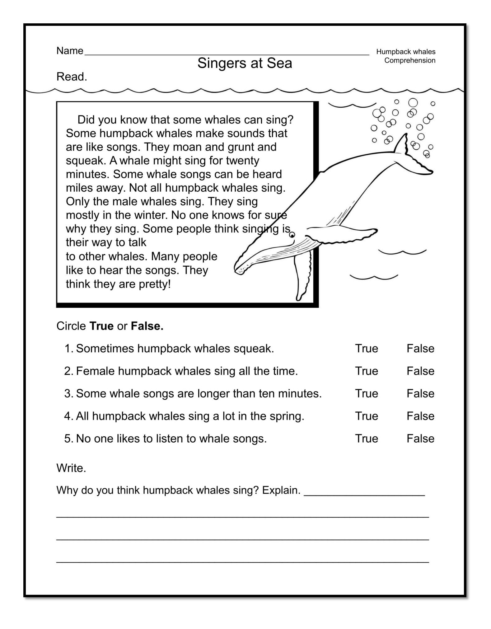 20 Spring Comprehension Worksheets