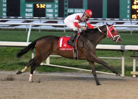 Internatonal Star Won the Lecomte Stakes by 2 1/2 lengths (Photo by Lou Hodges Jr.)