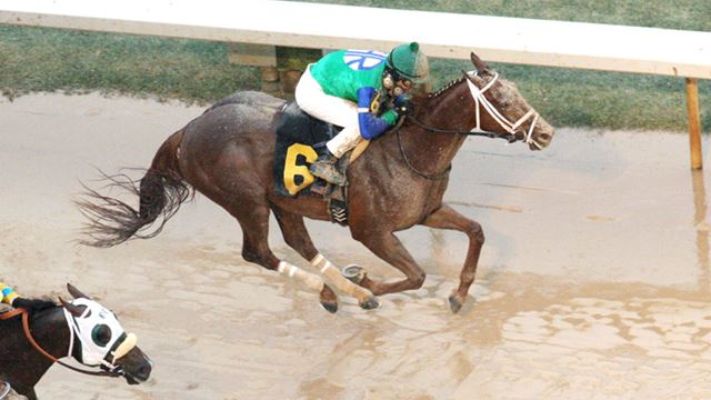 Far Right Uses Strong Kick To Win Southwest Stakes