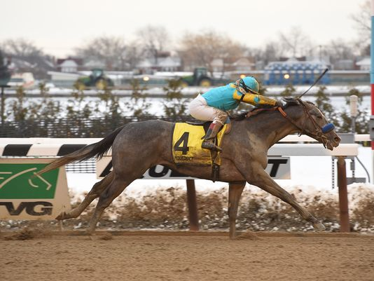 El Kabeir closed in the slop to win the Grade 3 Gotham Stakes (NYRA)