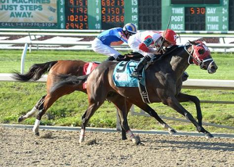 International Star gets up over Stanford to win the 2015 Louisiana Derby (Alexander Barkoff / Hodges Photography)