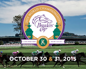 2015 Metropolitan Handicap Preview