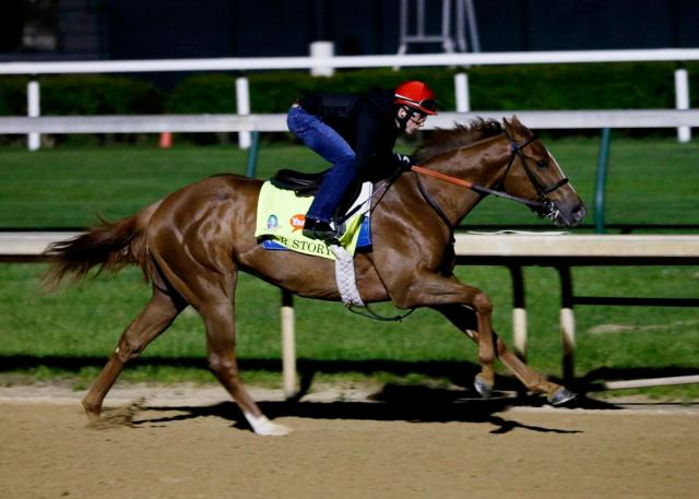 Kentucky Derby entrant War Story during his workout on April 22, 2015 (Photo courtesy of Churchill Downs PR)