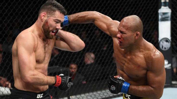 Image result for Chris Weidman After Jacare Knockout