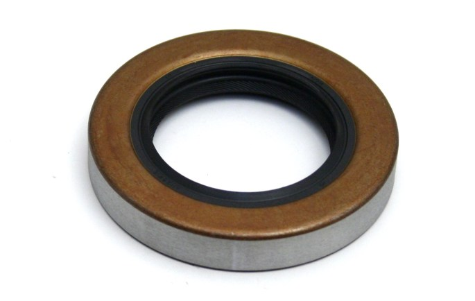 Drive Pinion Oil Seal Image