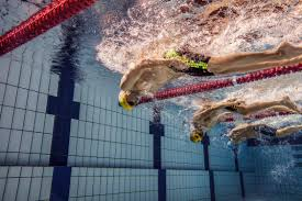 Free style swimming: Rules and Regulations| Tips and Techniques| Size| Types