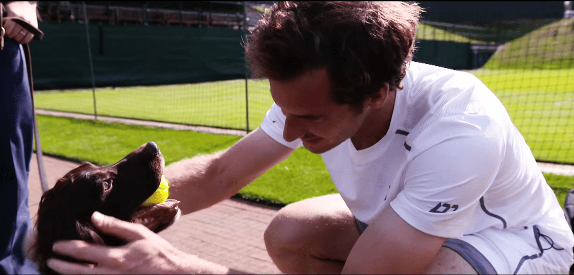 Andy Murray Brand Endorsements Sponsors Partners Ambassador WWF