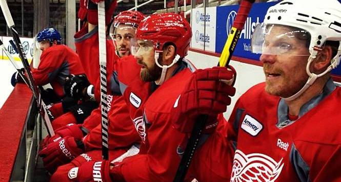 Detroit Red Wings 2013
